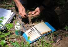 best soil test kit