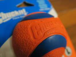 best tennis ball for dogs